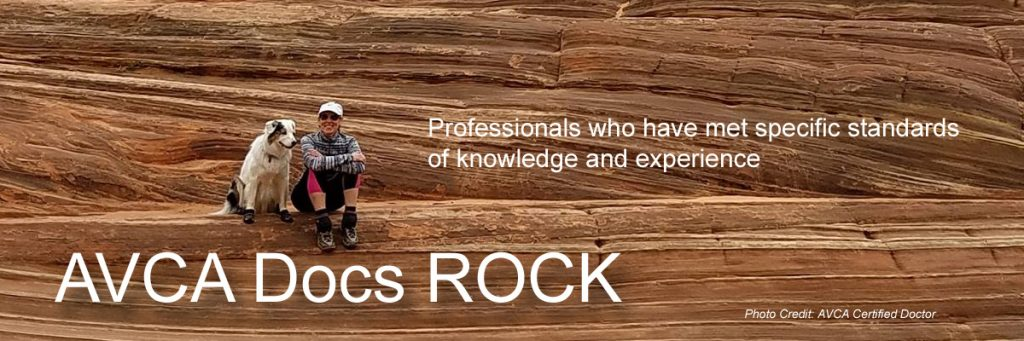 AVCA Docs ROCK - Professionals who have met specific standards of knowledge and experience